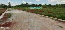 Promo DP murah Tanah Kavling Siap Bangun berlokasi di Rajabasa Lampung