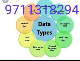 Career based part time job data entry