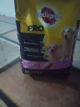 Food for puppy and for puppy mother