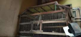 Cage for love birds
