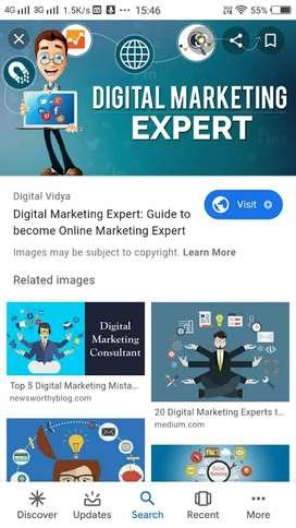 Digital marketing Expert and team handling
