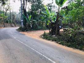 Ayavana Road frontage 20 cents square house plots for sale