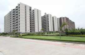 Resale 2bhk flat in Apollo DB City Only 45 lakh plz Call me