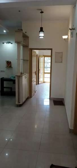 Independent 3bhk society flat Raipur road Near RTO
