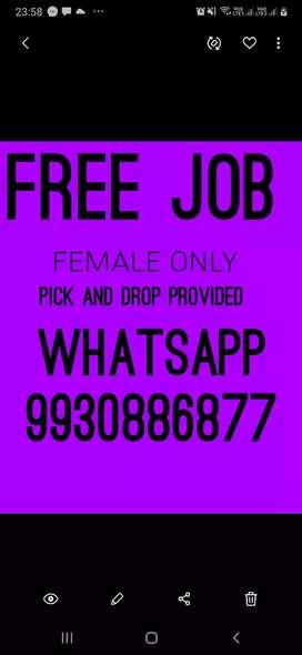 Free jobs offer