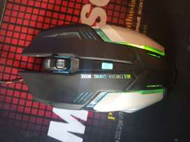 Mouse with dynamic light