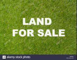 Plot is in near ITER Engg. College, Jagmara
