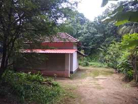 Plot with house 43 cent for sale at vaniyamkulam 1