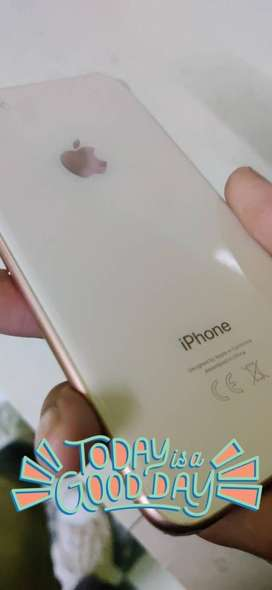IPHONE 8 GOLD COLOUR 12 DAYS OLD