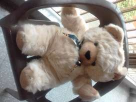 Teddy Bear (Made in Singapore)