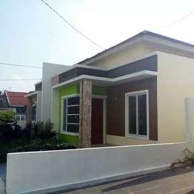 rumah minimalis di pekanbaru