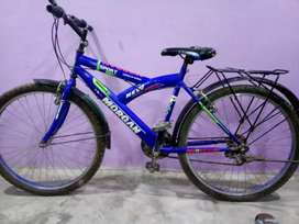 Brand new cycle