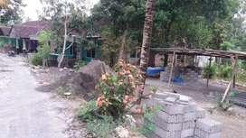tanah murah dekat kota luas 445 mtr, di mancasan  gamping yogyakarta