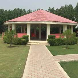 Houses flats for sale in Kalam tehsil
