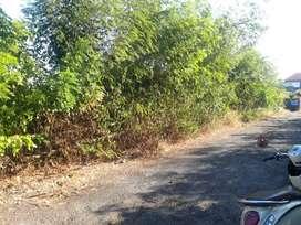 Dijual tanah Bali Arum kampial bisa di kavling