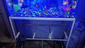 Aquarium good