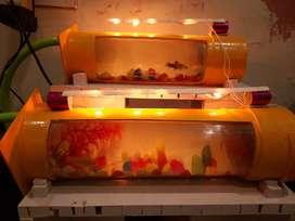 PVC Aquarium