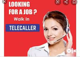 Need urgent requirement for female telecallers for  voice processing
