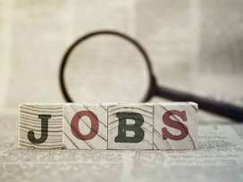 Required EDP Executive for Leading Automobile Dealership