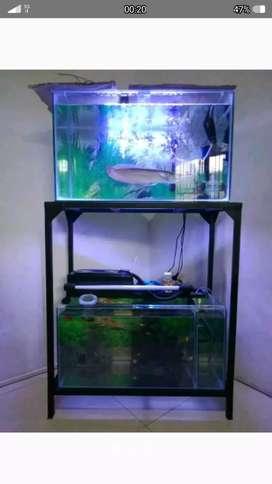 Aquarium 30 X 60 plus ikan arwana silver 35 cm
