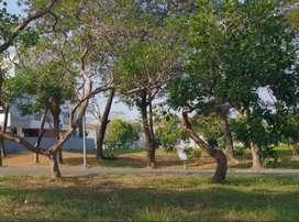 Tanah Sewa Citraland Bukit Telaga Golf