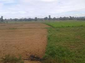 Kollegal surrounding land agriculture
