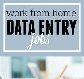 Data entry work from home with daily payment