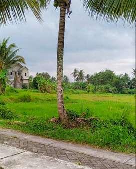 Tanah Jalan Kaliurang 6000 Meter Kawasan villa Sejuk