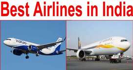 Direct Hire for Airlines Job For Dream Airlines Compny.
