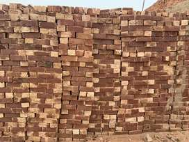 We deal in all Punjab wholesale bricks