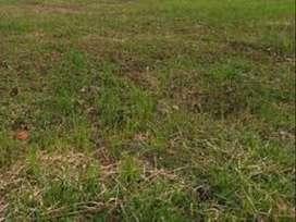 Tanah JL Wilis, Kendal Nganjuk