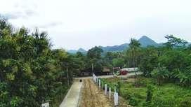 Tanah Murah Siap Bangun Akses Nempel Jalan Raya Transyogi