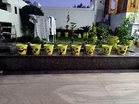 Emoji Flower Pots