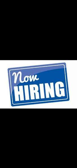 Over 50 hirings for freshers and experienced