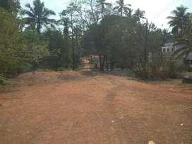2.10 Acre Land at Sreemoolanagaram, Aluva