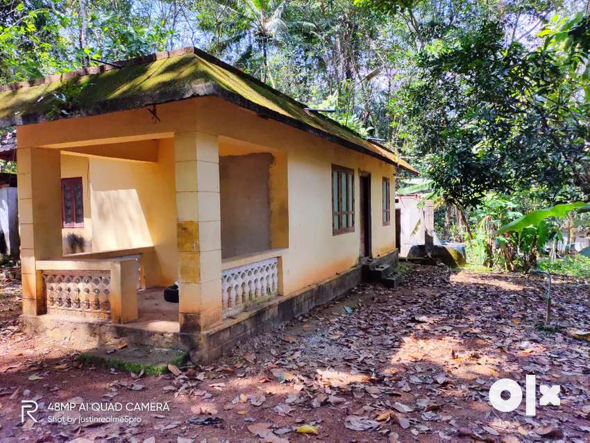 30 cent rubber plantation with house 0