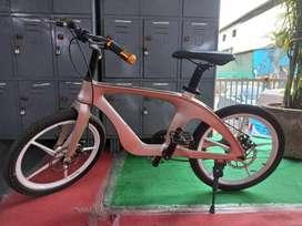 New Bicycles/E-bike (GogoA1 @ Rabale)