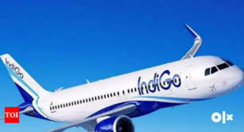 Congrats, Indigo Airline Gives Opportunity For Make future . 0