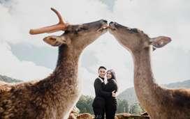 Prewedding dan wedding fotografi