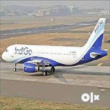 Indigo Airlines Airport Airlines job opening for the Ground Staff Hiri 0