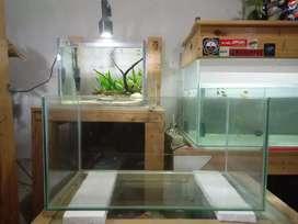 Aquarium murah size 50x30x30
