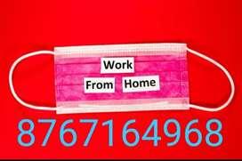 Good home based job data entry work