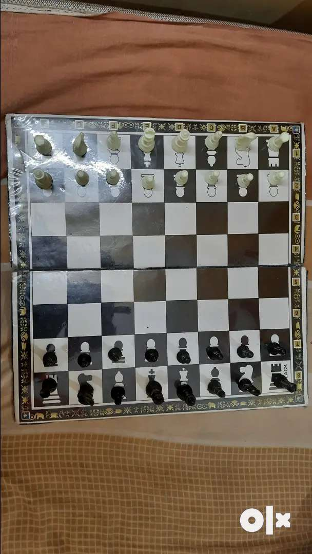 Chess 5 month old 0