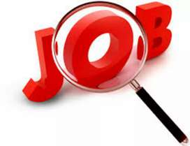 Shamli official works Direct Joining-No Interview for 10&12th