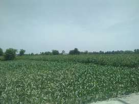 12 Acre ARMY ALLOTED AGRICULTURE LAND