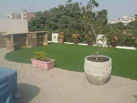 Artificial grass Astro Truf turf astro   best soft quality  available