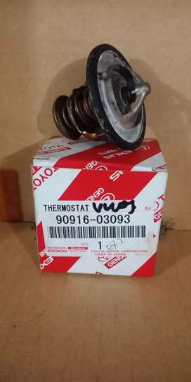 Thermostat Vios
