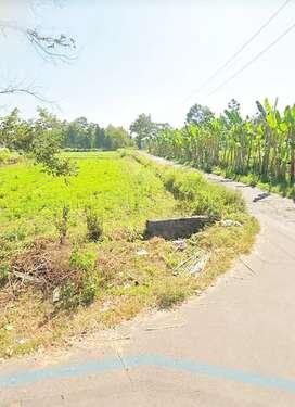Tanah strategis maguwoharjo cocok untuk kavling dekat jalan raya tajem
