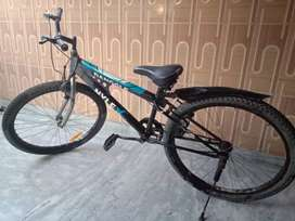 Dangler Nyle Bicycle/@4999 only