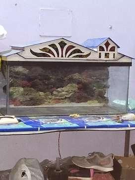 A 2.5 feet inch long aquarium with cover